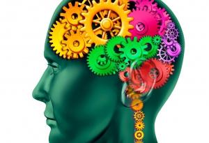 Cerveau et ritmo emdr